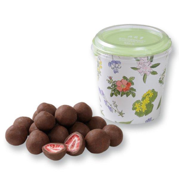 画像1: 六花亭ストロベリーチョコレート  B)ミルク (1)